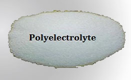 Polyelectrolyte manufacturers India
